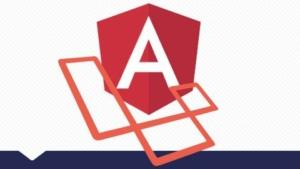 Angular + Laravel 身份验证和重置密码
