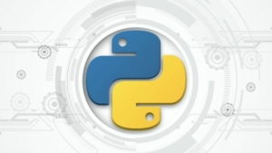从入门到精通成为一个Python开发者