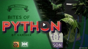Python&Houdini综合训练  让你的python技能更上一层楼
